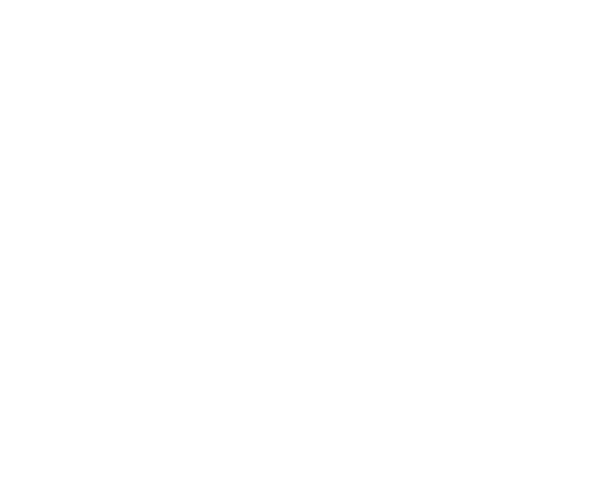 Prometheus Forensic Services Ltd